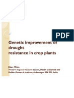 Genetic Improvement of Drought Ppt_2