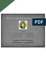 cedera ligamen lutut