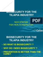 biosecurity-for-tilpia-industry