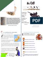 EL CID CAMPEADOR, LA HISTORIA A TRAVÉS DE LA EDAD MEDIA