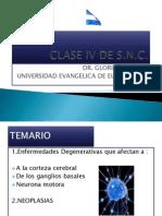 CLASE_IV_DE_SNC