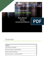 Optical Network McLaren HP
