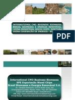 Brasil Biomassa - SPE Wood Chips Exportacão Biomassa Imbituba