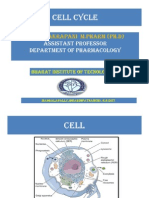 Basic Principles of Cell Injury and Adaptation