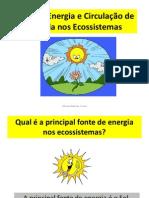 8.Ppt.prof.Fluxo.energia