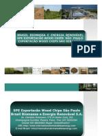 SPE Exportacão Biomassa São Sebastião SP