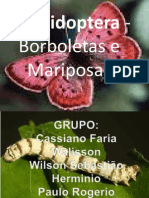 zoologia trapalho mariposa