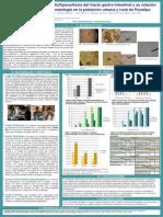 Parasitosis y Multiparasitosis del tracto gastro-intestinal y su relación con la sintomatología en la población urbana y rural de Pucallpa