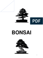 8549216 Manual Bonsai