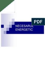 Necesarul Energetic