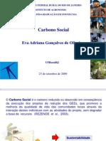 Metodologia Do Carbono Social