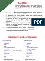 Tema 5 Traduccion