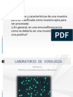 Presentación 9. Inmunofluorescencia (1)