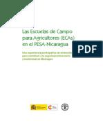 Manual ECAs Nicaragua