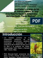 Las aves encontradas a lo largo de los ríos Manuripi, Orthon y Madre de Dios en la Reserva Nacional Amazónica Manuripi-Heath, Pando (Bolivia)