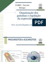 Organização dos genomas e regulação da expressão gênica