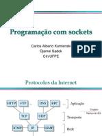 Programa Sockets 1
