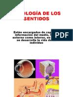 FISIOLOGÍA DE LOS SENTIDOS