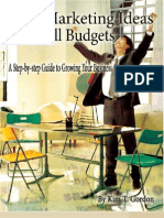 Big Marketing Ideas to Grow Your Business 50 Pgs PDF