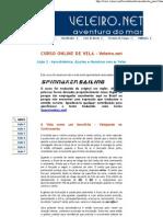 VeleiroNet - Curso de Vela02