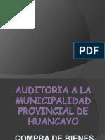 Auditoria Gubernamental[1]