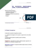 9. Plantas transgenicas