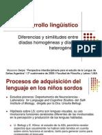 Presentación sobre el desarrollo del lenguaje en díadas homogéneas y díadas heterogéneas