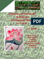 Limpiezaenergeticaelexirfloral
