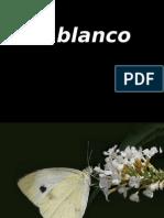 En_blanco