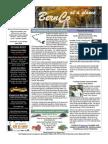 Neighborhood Newsletter Oct & Nov 2011