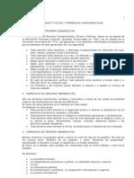 17. Unidad IX - Constitucion y Derechos de 1ra, 2da. y 3ra