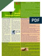 Boletín Psicología Positiva. Año 3 Nº 2