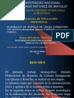 Expo Sic Ion Trabajo de Monografia