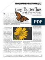 Kentucky; Attracting Butterflies with Native Plants