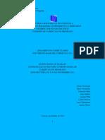 LINEAMIENTOS 5to Papel Trabajo 2 y 3-11-2011