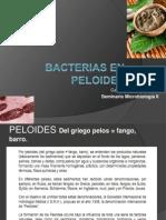 Bacterias de Lodos y Fangos - Lecaros