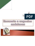 Presentación_Encuestas negocios