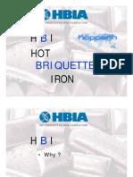 05 Hot Briquet Ting Process Schuetze