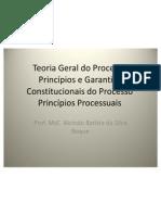 Teoria Geral Do Processo Principios