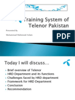 telenorstrainingsystem-12703910918643-phpapp01
