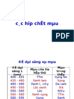 C19 Chat Mau