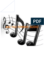 Aac File Format Audio