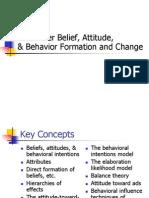 Attitude and CB 1