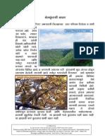BelkundChi Bakhar Marathi Jungle Story by Dr.v.T
