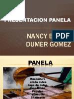 Diapositivas Socializacion de La Panela