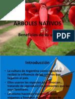 ARBOLES_NATIVOS