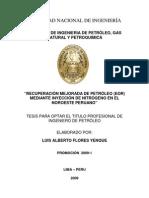RECUPERACIÓN MEJORADA DE PETRÓLEO (EOR)