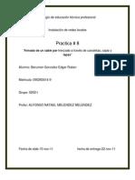 practica # 8 -nata