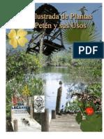 Guia Ilustrada de las plantas del Petén, Yucatán