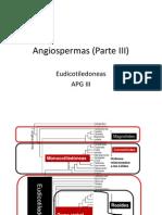 Angiosperm As III